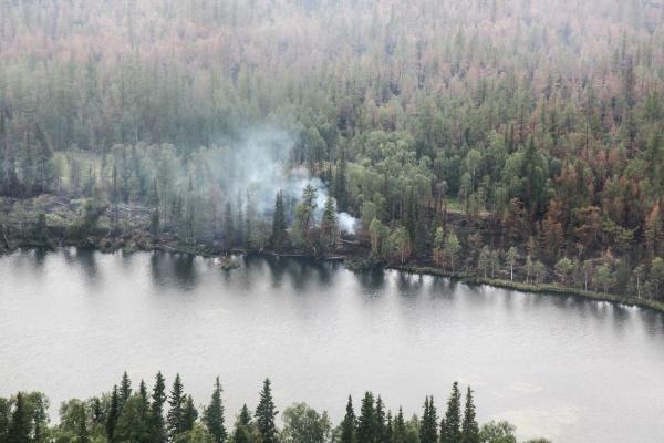 лесной  пожар Фото: пресс-служба губернатора ЯНАО
