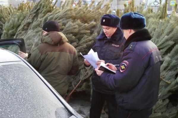 рейд, полиция, елочный базар, елки, Курган|Фото:УМВД России по Курганской области