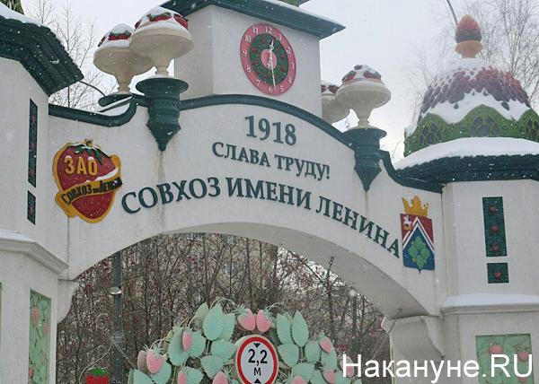 Совхоз имени Ленина Фото: Накануне.RU