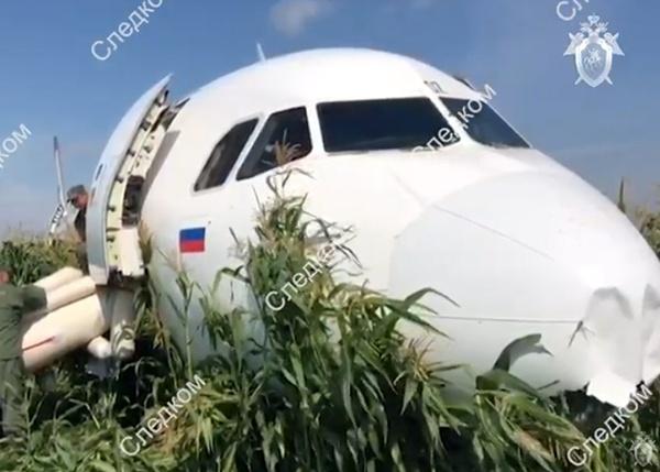 Airbus А321 Уральские авиалинии|Фото:youtube.com|Следственный комитет России
