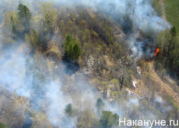 пожар аэропорт Сочи|Фото:Twitter